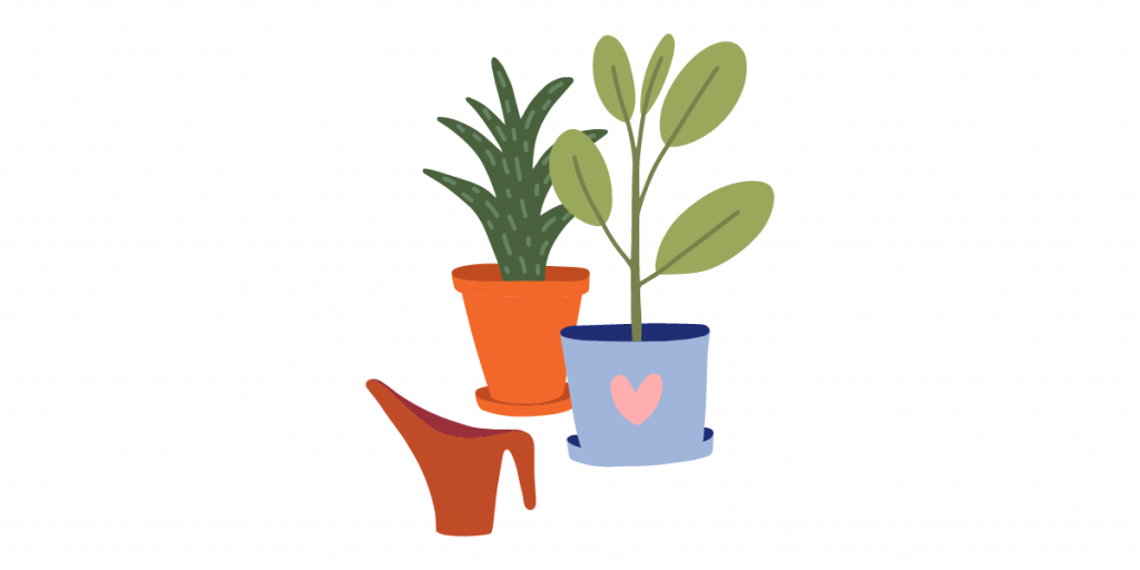 Conoce las plantas que mejor crecen en el clima donde resides